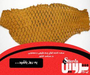 خرید اینترنتی پوست چرم ماهی