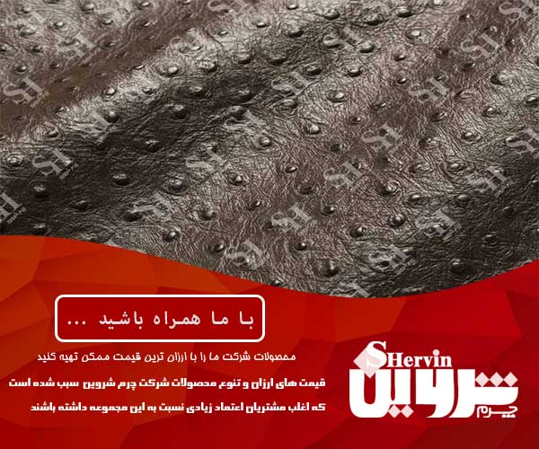 صادرات پوست چرم شترمرغ